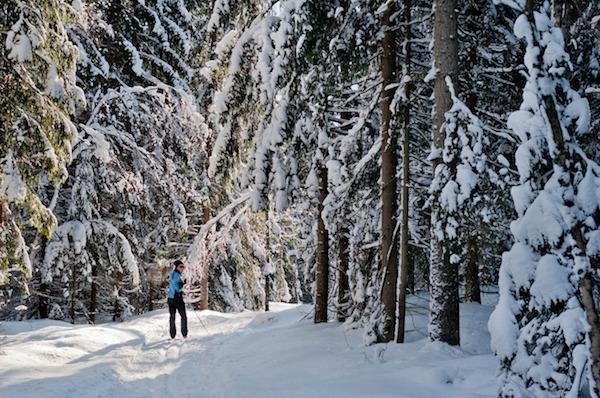 Winter-Schwedischkurs Åre 5